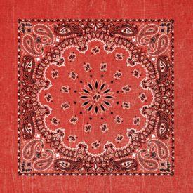 BAN2201 Red Stonewashed Paisley Bandana